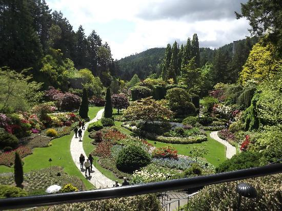 Butchart Gardens In June Picture Of Central Saanich Victoria Capital Regional District