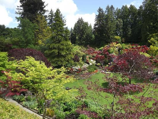 The Proposal Picture Of Butchart Gardens Central Saanich Tripadvisor