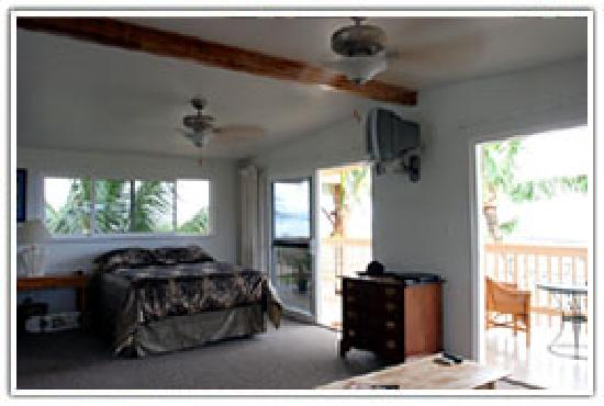 Sharks Cove Rentals: Room 100
