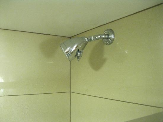 Doubletree Hotel Chattanooga: The Shower Head that would not move