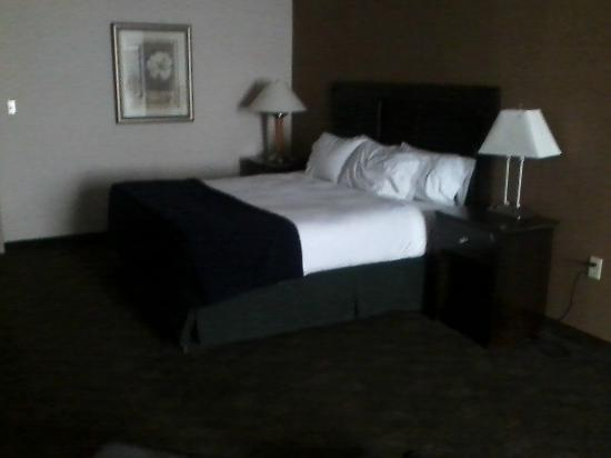 Dayton Grand Hotel: king suite