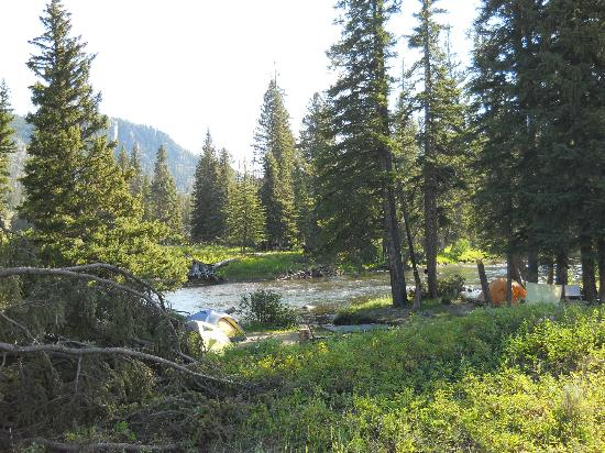 Slough Creek Campground: Campsites