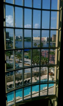 Embassy Suites Tampa - Downtown Convention Center: Main building windows at day.