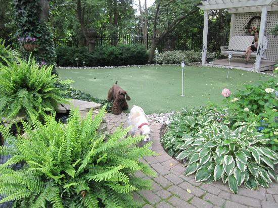 Historic Davy House B&B Inn: Gorgeous landscaping and putting green.