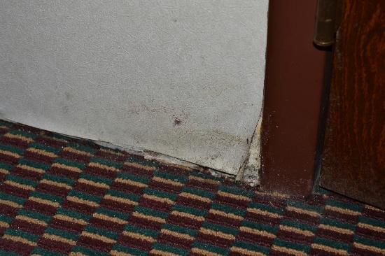 Quality Inn Cedar Point South: Wall outside Bathroom showing more mold and water issues