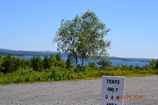 Bar Harbor Campground: View from campsite