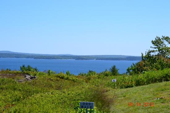 Bar Harbor Campground: View from our campsite