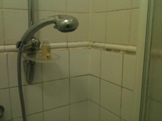 Burley Court Hotel: The shower needs a scrub