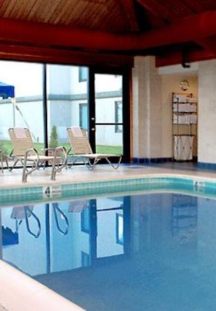 Fairfield Inn Binghamton: Indoor Pool