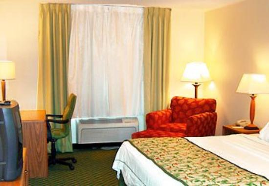 Fairfield Inn Danville: King Guest Room