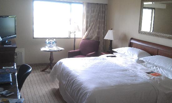 Sheraton Palo Alto Hotel: Room