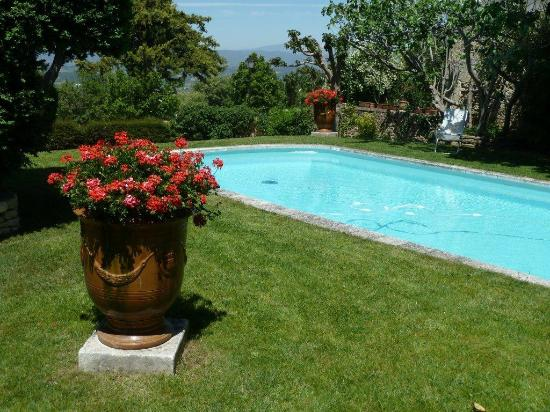 Le Clos du Buis: Garden and pool