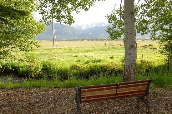 Creekside Country Haven: View from the Creekside Bench