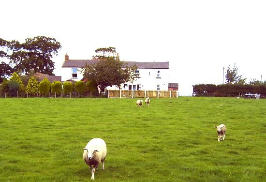 Mount Farm B&B