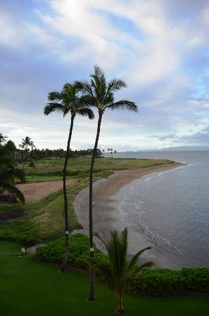 Menehune Shores Oceanfront Maui Condos: Beach View from Unit 418