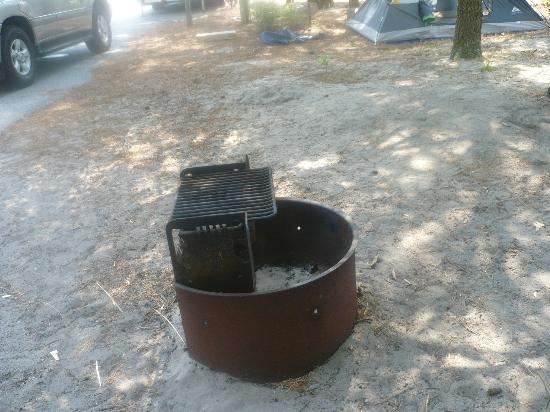 Cape Henlopen State Park Campground: fire pit