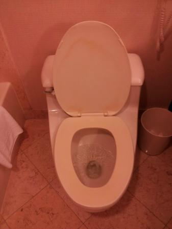 InterContinental Dallas: Nasty toilet seat. Note lid discoloration