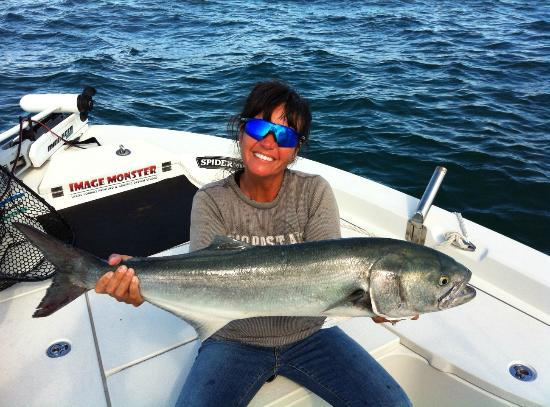 Spring chopper bluefish picture of capt jot owens jot for Fishing in raleigh nc