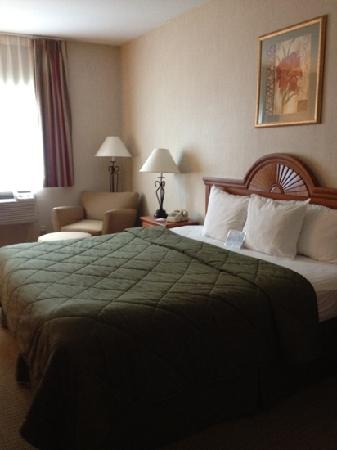 Comfort Inn Ellsworth: our king size bed.
