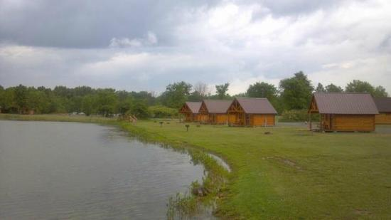 Branches of Niagara Campground &amp; Resort: View of the cabins