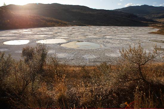 Osoyoos, Canada : Spotted Lake 