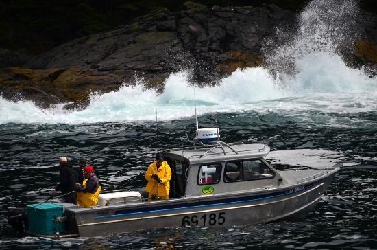 Waterfall Resort Alaska: Fishing at Noyes Island