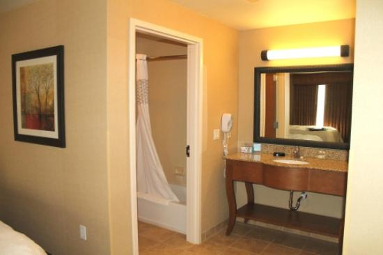 Hampton Inn & Suites Buffalo: Bathroom area