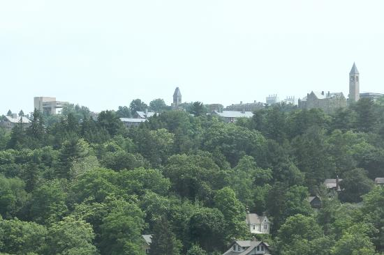 Hilton Garden Inn Ithaca: View from room toward Cornell U.