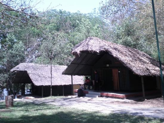 Jungle Lodges Kabini River Lodge