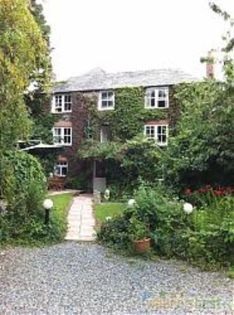 Ivy house st merryn restaurant reviews phone number for The ivy house