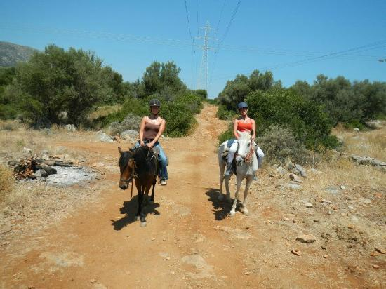 Stalis, Grekland: With mine twin sister, horse Princes (left) and Baby (right)