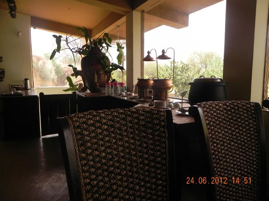 The Tree House: Lunch time...a view of aravali hills