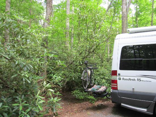 Honey Bear Campground: Our RV fit the site nicely-- not much leveling to do.