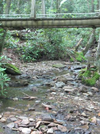 Honey Bear Campground : Bridge over peaceful water -view from our site