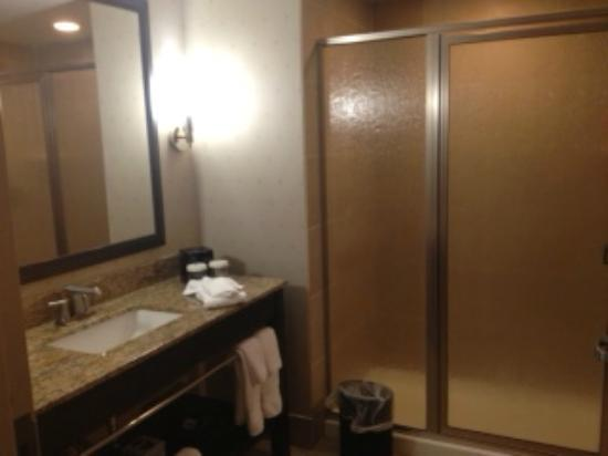 Embassy Suites Jackson-North/Ridgeland: shower only, no tub