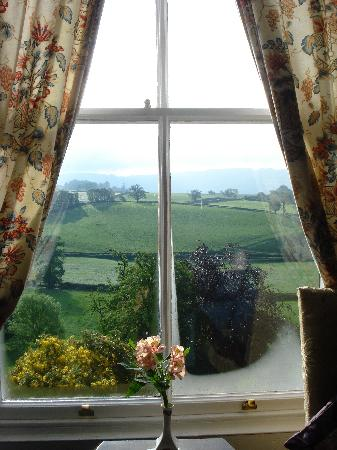 Tynllwyn Farm: View from a guestroom window
