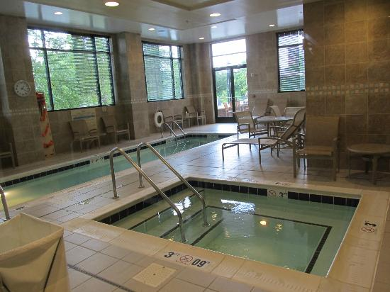 Hilton Garden Inn Arlington/Shirlington: Inside pool...clean looking area