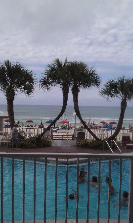 Palmetto Inn & Suites: pool view from back of hotel
