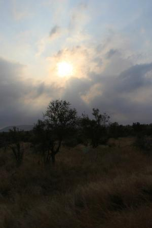 Rhino Post Safari Lodge: Morning at Plains Camp