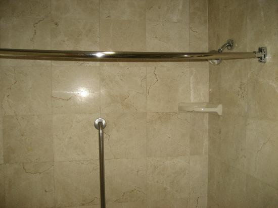Homewood Suites by Hilton San Jose-Silicon Valley: Shower/tub