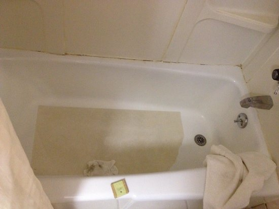 Super 8 Mackinaw City/Bridgeview: dirty tub.