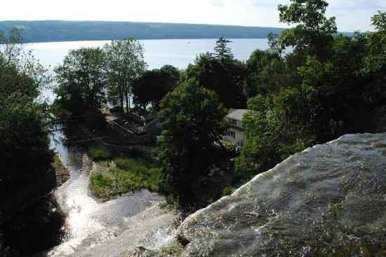 Finger Lakes Waterfall Resort: Looking down from the top of the waterfall