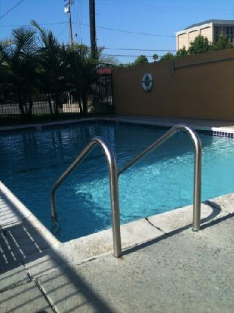 Portola Inn and Suites: pool