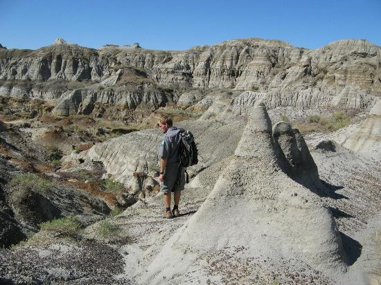 , : Dinosaur Provincial Park, Badlands, Alberta, Canada