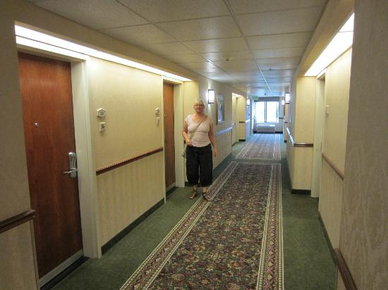 Hampton Inn San Francisco-Airport: Hallway