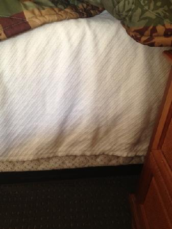 Country Inn & Suites Williamsburg (Busch Gardens Area) : blanket