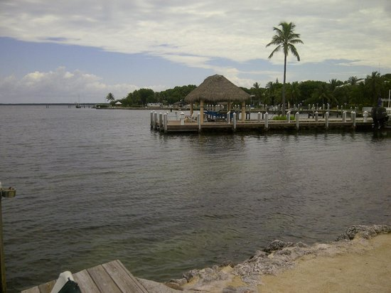 Bayside Inn Key Largo: View from the jetty