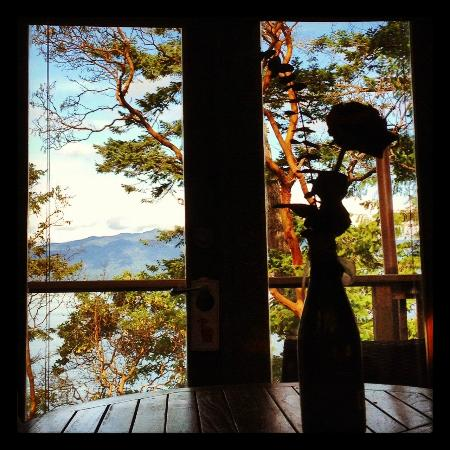 Rockwater Secret Cove Resort: view from bed in the morning - woke up to an eagle perched just 20 feet from our door!