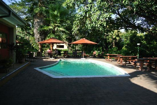 Hotel Numbi & Garden Suites: Pool area
