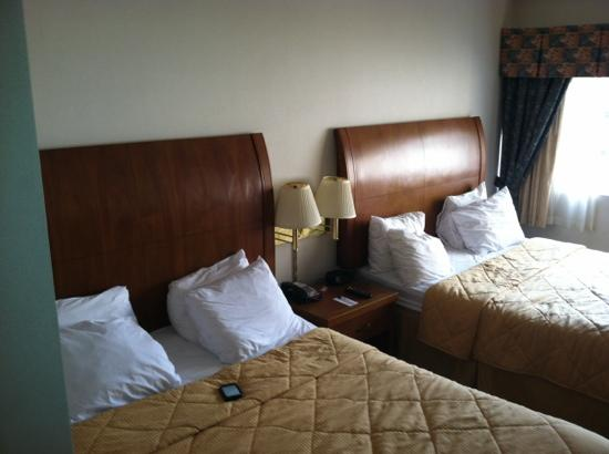 Comfort Inn & Suites: this is a $195 room. barely big enough for two beds.